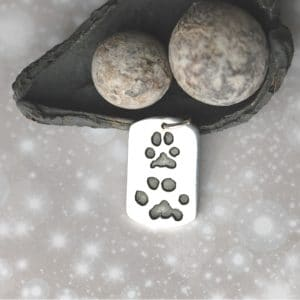 Large silver dog tag with your pet's unique paw prints and names
