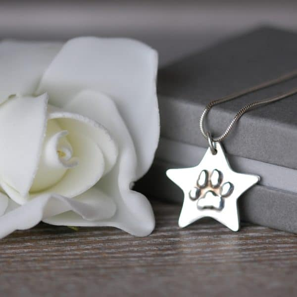 Silver star with your pet's raised paw print