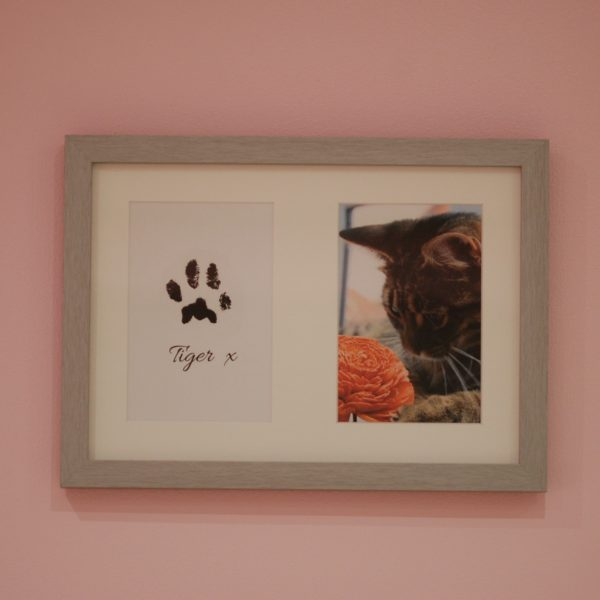 Brushed silver frame, part of paw print kit with cat paw print and photo keepsake