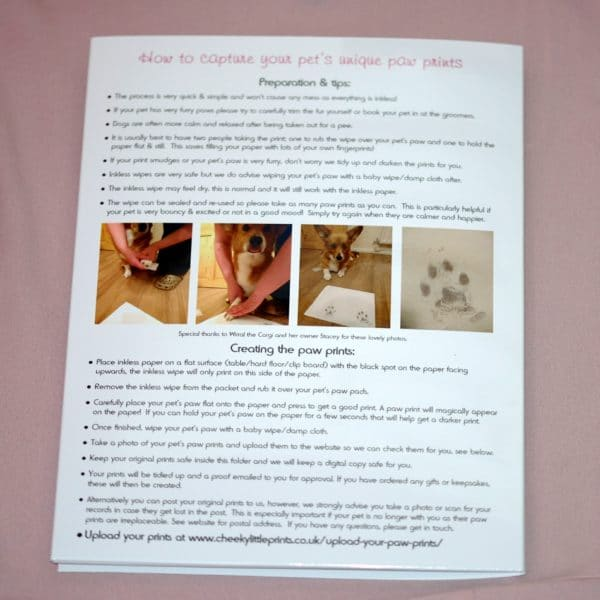 Paw print instructions on the back of the presentation folder