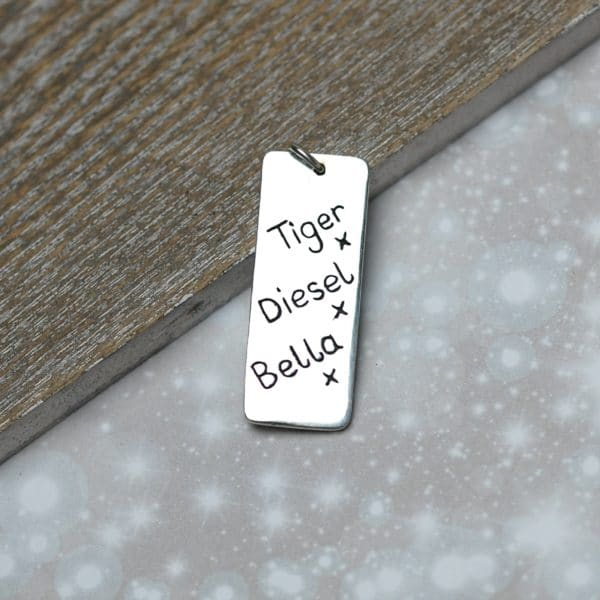 Sterling silver triple paw print charm personalised with pet names