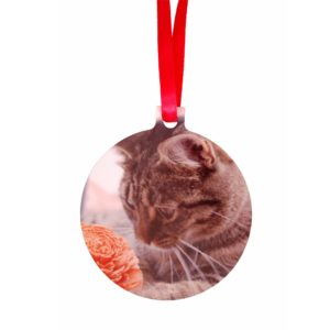 Personalised paw print Christmas decorations