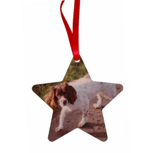 Personalised Christmas ornament with your pet's unique paw print and photo
