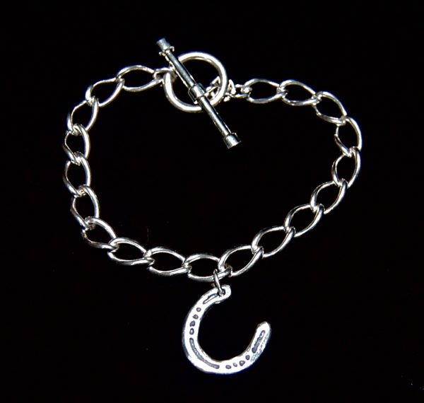 T-bar curb chain bracelet with small silver horse shoe charm.