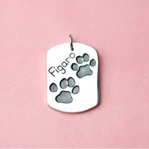 Sterling silver charm with Figaro's paw print