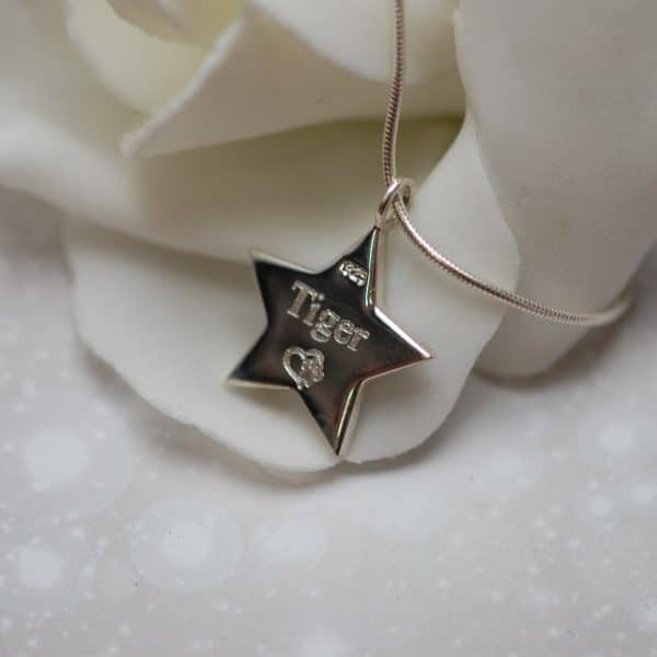Pet name engraved on the back of silver star pendant with pet fur or cremation ashes