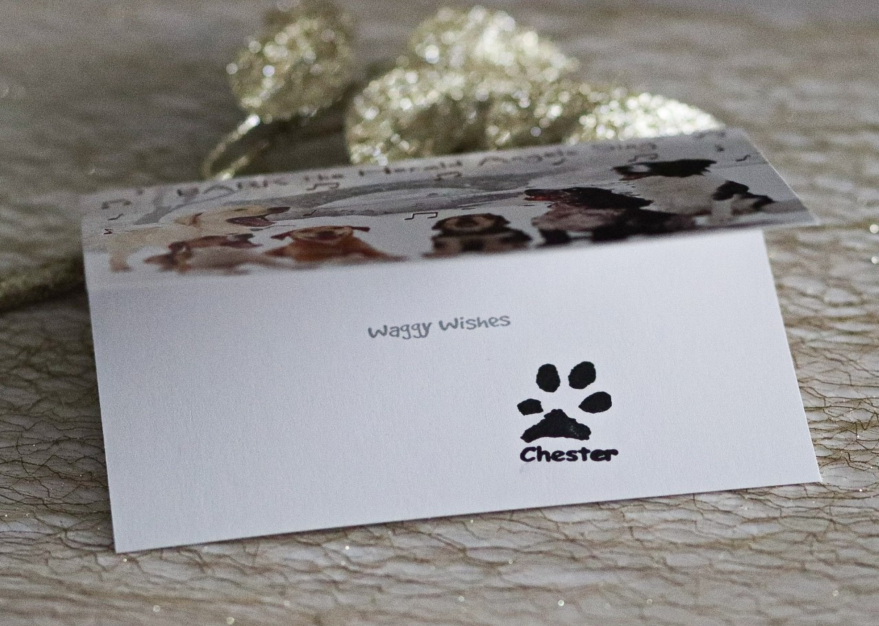 Christmas card with unique paw print inside made with a personalised stamp