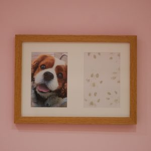 French oak effect frame, part of paw print kit with dog paw print and photo keepsake