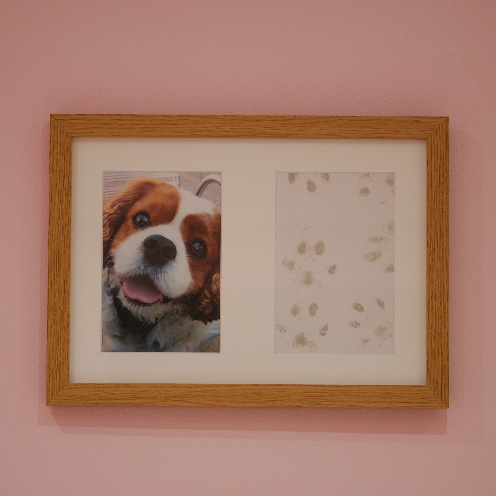 French oak effect frame with pet photo and paw prints taken with a wholesale inkless paw print kit
