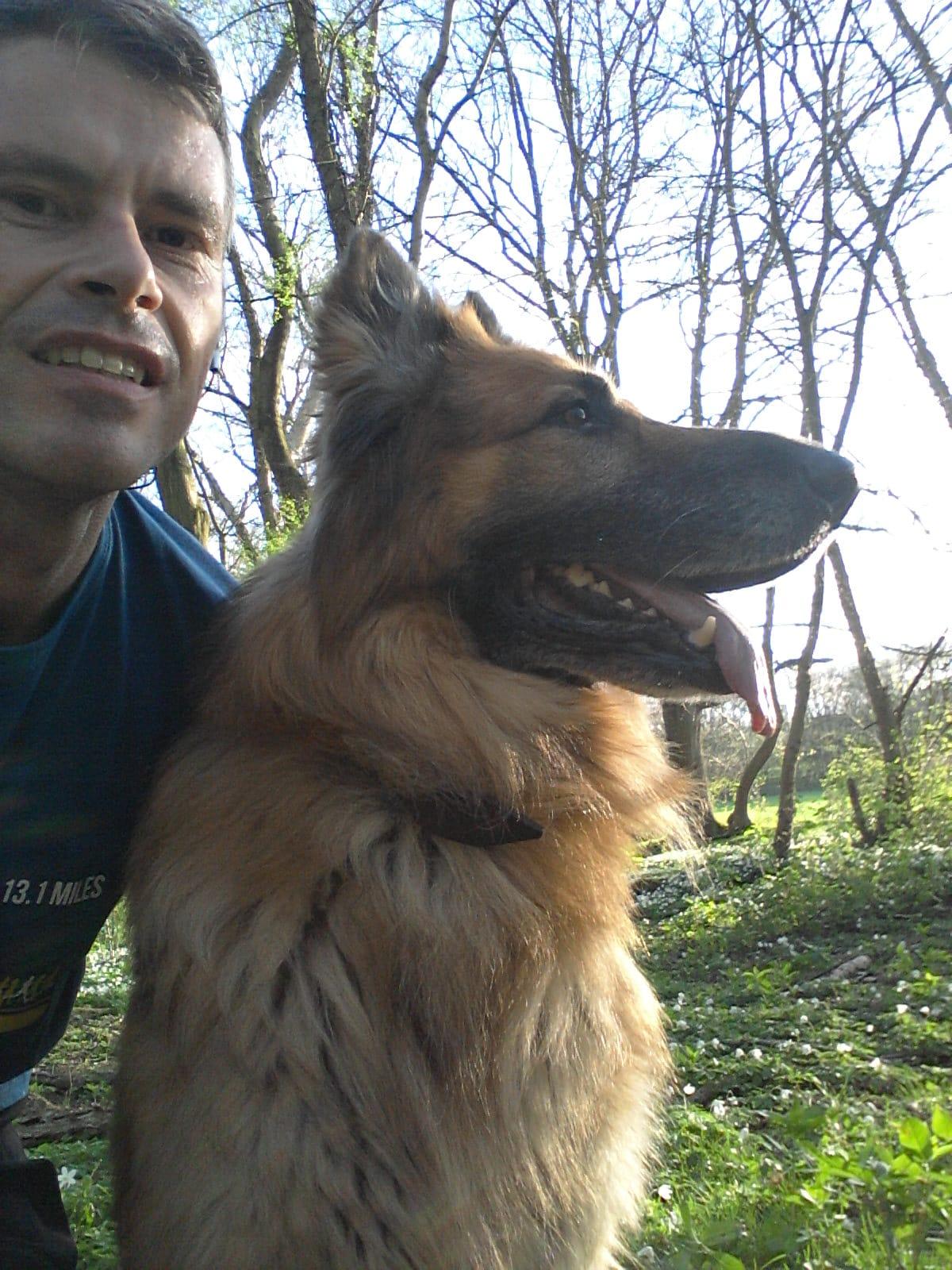 German Shepherd dog with his owner